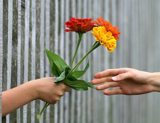 flores para cada ocasión