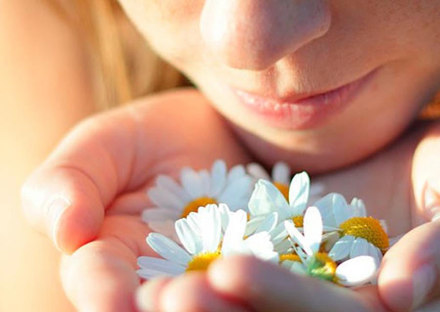 por qué las flores huelen