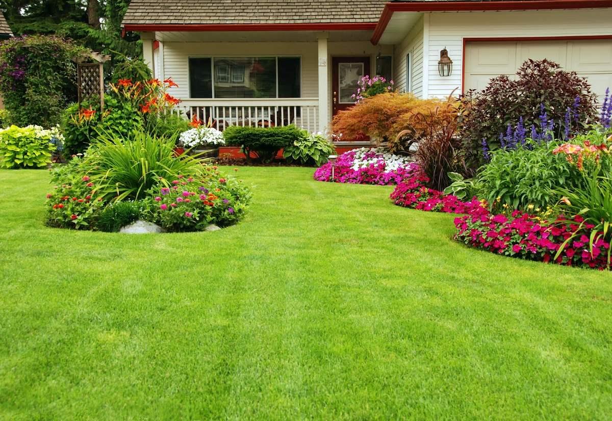 8 ventajas de tener un jard n en casa flores a domicilio - Casas y jardines ...