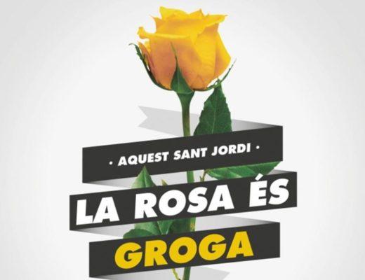 rosas amarillas para Sant Jordi