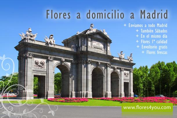 Como enviar flores a Madrid
