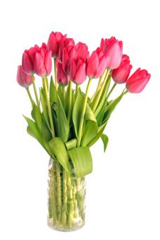 flores-y-mas