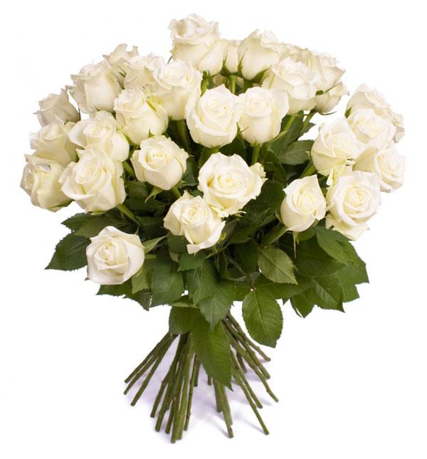 Ramo De Rosas Blancas O Rosas A Domicilio Con Flores4you - Imagenes-de-ramos-de-rosas-blancas