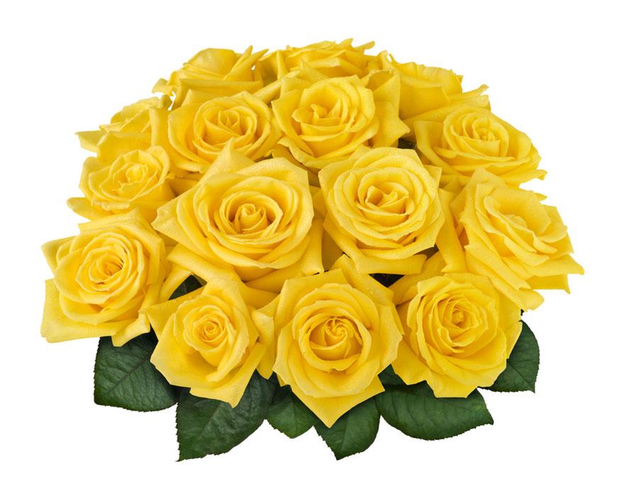 Bouquet De Rosas Amarillas O Naranjas1524