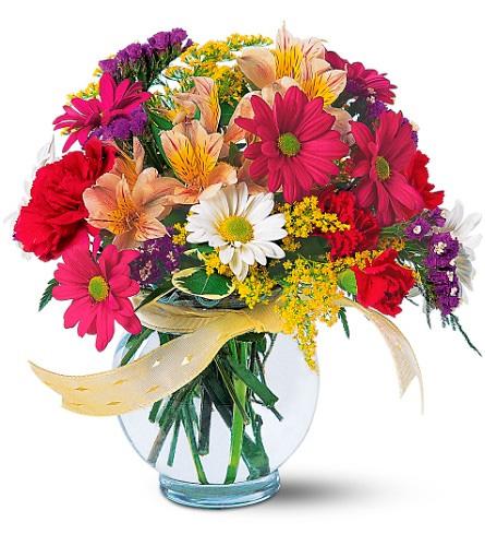 Jarrón de margaritas y claveles a domicilio con Flores4you.