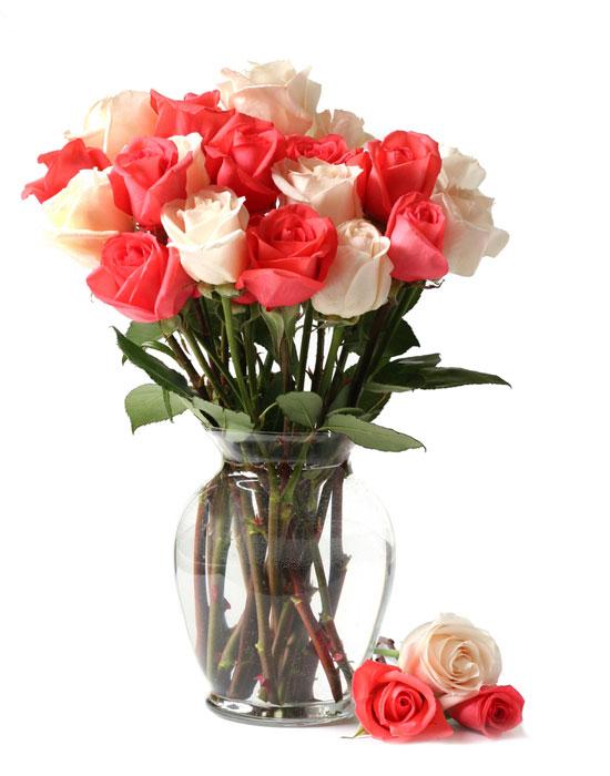 Resultado de imagen para rosas rojas y azules  en un jarrón